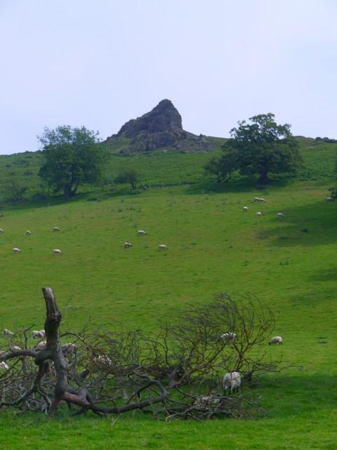 Shropshire 002.jpg
