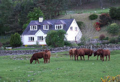 Clachan Farmhouse Bed & Breakfast, near Ullapool