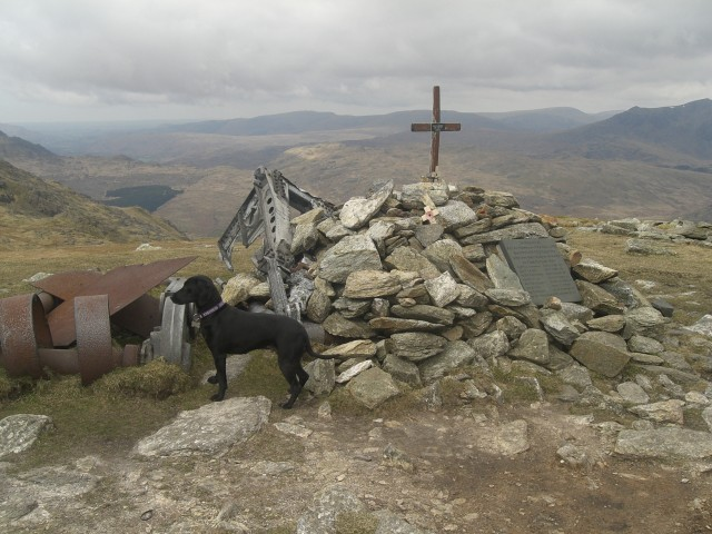 09 Aircraft Memorial on Great Carrs.JPG