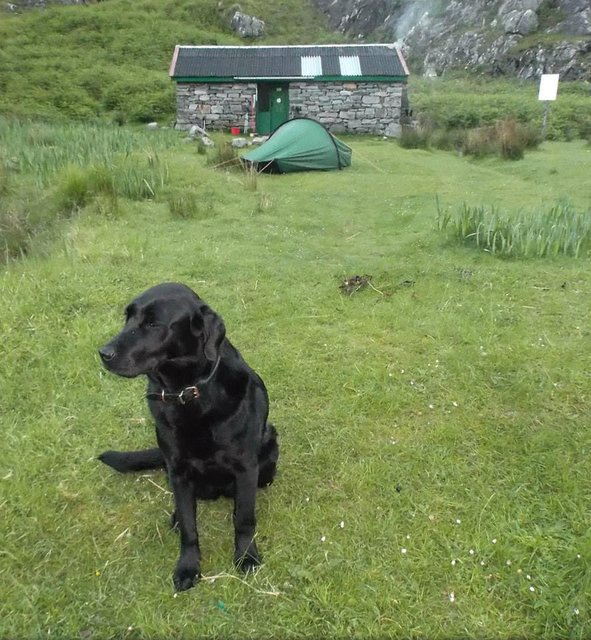6 Saba at Sourlies Bothy.jpg