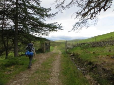 001 walk in to Beinn Dearg 19th June 2014 c.jpg