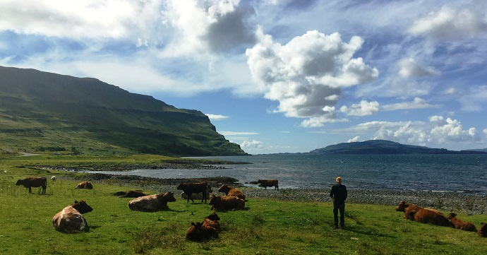 Day 10b - On the Mull shoreline.JPG