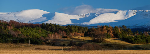 Cairngorms from Rothiemurchus Forest