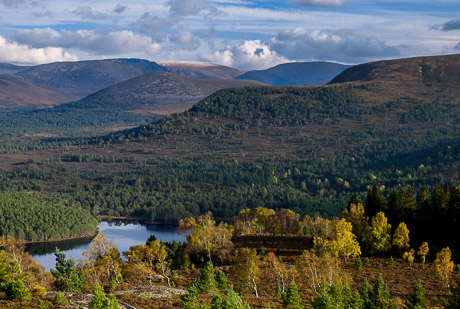 Aviemore, Rothiemurchus and the Northern Cairngorms