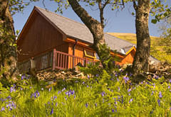 Inverskilavulin Lodges, Glen Loy, near Fort William
