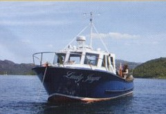 Scenic and Wildlife Cruises, Mull Charters