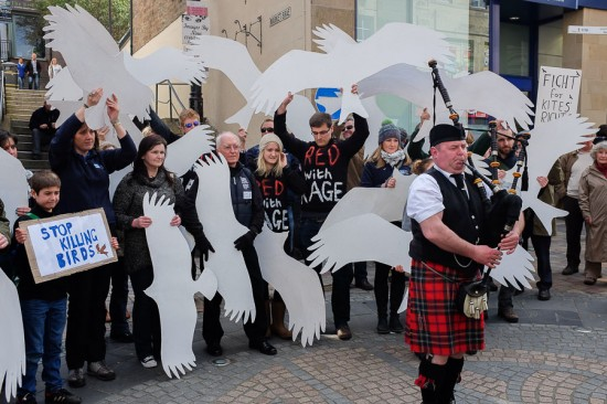 Protesters against raptor persecution in Inverness