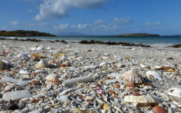Some of the beaches near Morar have very high shell content