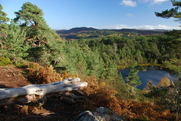 View over Coire Loch, Glen Affric, towards the windfarm site