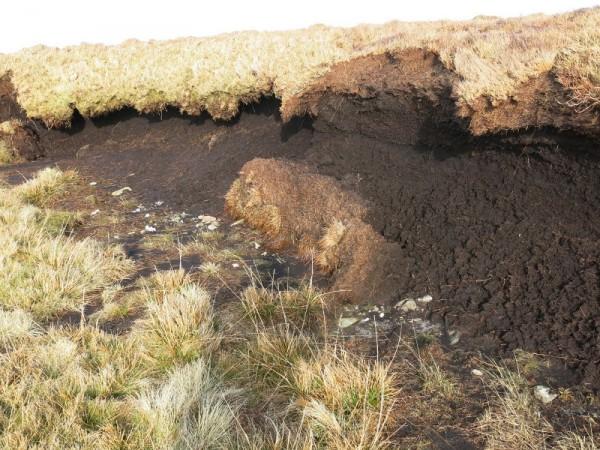 eroded peatland