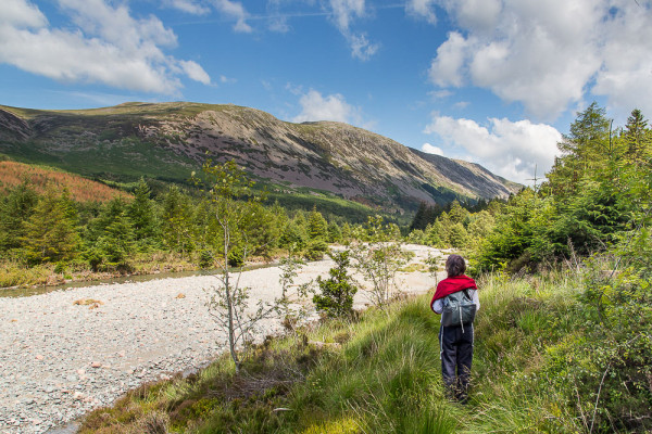 we're rightly proud of our wild land in Scotland, but there are some great things happening elsewhere in the country too – this is the 'Wild Ennerdale' project in the Lake District.