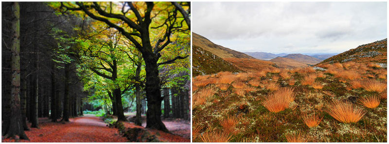 Does autumn start when the leaves and hillsides change colour?