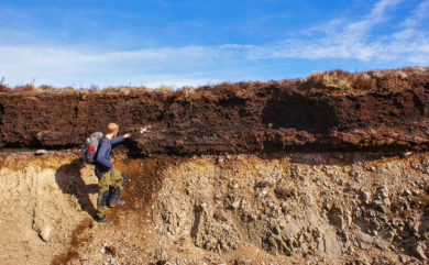 FEATURE: Why we should care about peat