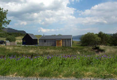 The Blueberry Shed, Braes