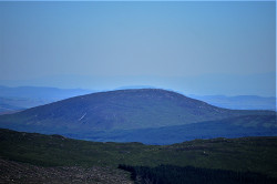 Cairnsmore (Black Craig of Dee)